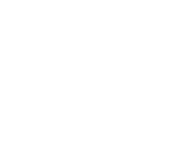 tire_logo1-copy.png