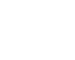 tire_logo_2.png